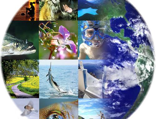 Un conversation sulla Biodiversita Martedì 18 Febbraio